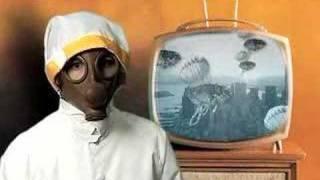 Fighting the War on Fleas