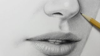 Drawing Time Lapse: Nose and Mouth