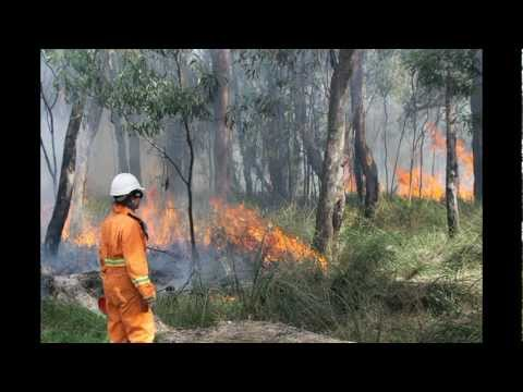 Fire in the Landscape video