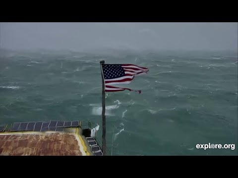 Kevin the Flag Shredded by Hurricane Florence – Over 7 Hours from Frying Pan Ocean Cam