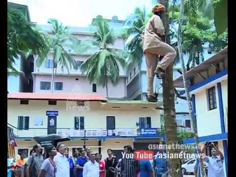 Women Coconut climbing competition at Malappuram : Chuttuvattom 01 September 2015 09 49 PM