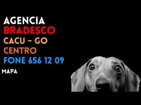 ✔ Agência BRADESCO em CACU/GO CENTRO - Contato e endereço