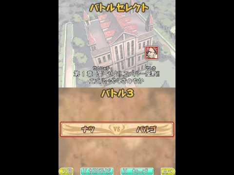 Fairy Tail Nintendo DS