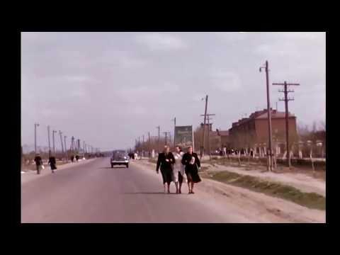 Москва, 1954 г. Дорога по Каширскому шоссе.