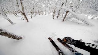 Niseko Japan  city pictures gallery : GoPro: Screaming Skier At Mt. Niseko In Japan