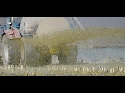 Gülle-Düngung: EuGH verurteilt Deutschland wegen Nitraten im Grundwasser