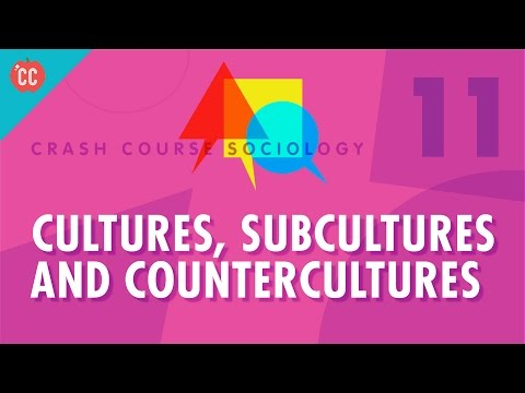 Cultures, Subcultures, and Countercultures: Crash Course Sociology #11 (видео)