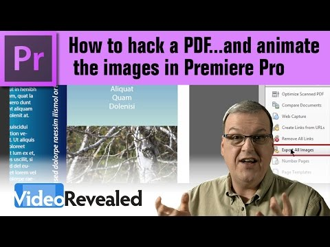 How To Hack A PDF...and Animate The Images In Premiere Pro