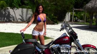 10. Used 2012 Harley-Davidson FLSTSE3 CVO Softail Convertible for Sale