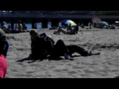 SANTA CRUZ BEACH BUM FIGHT (SQUIRRELS REDEMPTION)