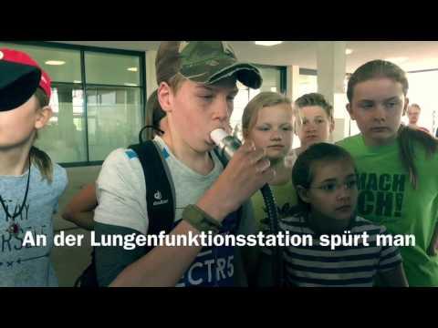 Das Herzkreislauf-Spiel der Stiftung Mainzer Herz