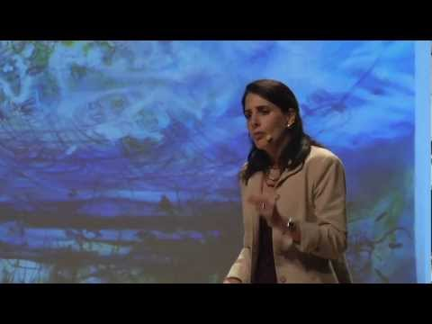 tedxmanhattanbeach - Talk title: Embodied brains, social minds: How admiration inspires purposeful learning The science of neurobiology is changing our understanding about social...