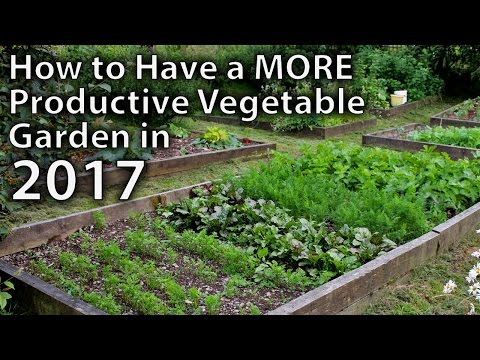 , title : '10 Ways to Make your Vegetable Garden More Productive in 2017...and Beyond!'