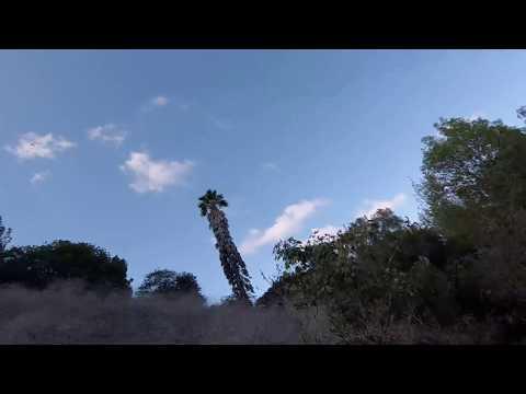 Palos Verdes Horse Trail Part 1