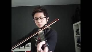 Video Beautiful in White and Canon Mash Up Violin Cover MP3, 3GP, MP4, WEBM, AVI, FLV Maret 2018