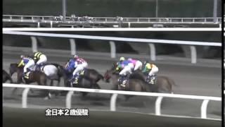 2012年全日本2歳優駿