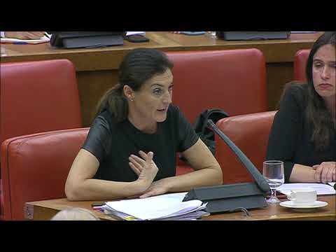Intervención Valentína Martínez en la Comisión de Asuntos Exteriores el Congreso de los Diputados
