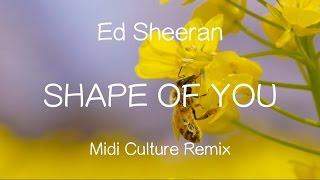 Video 【洋楽和訳】Ed Sheeran - Shape Of You (Midi Culture Remix)Lyrics download in MP3, 3GP, MP4, WEBM, AVI, FLV Mei 2017