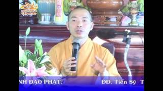 Nhận Thức Về Cái Khổ Ở Đời Qua Lăng Kính Đạo Phật - Thầy Thích Quang Thạnh