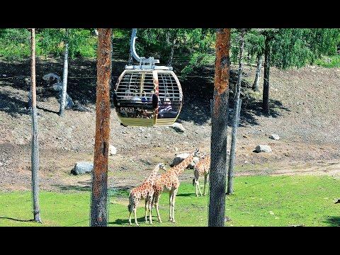 Doppelmayr Safarigondel Kolmården, Schweden (2011)