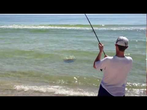 Fishing photo video gallery gulf shores orange beach for Gulf shores alabama fishing