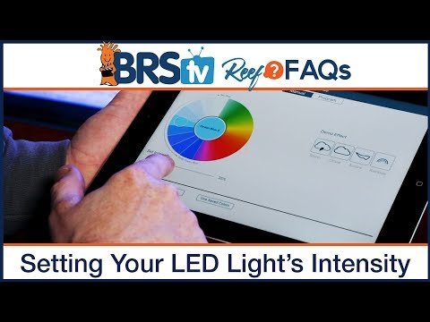 PAR & Reef Tank Lighting Schedules: What's the ideal program for LED aquarium lighting?   Reef FAQs