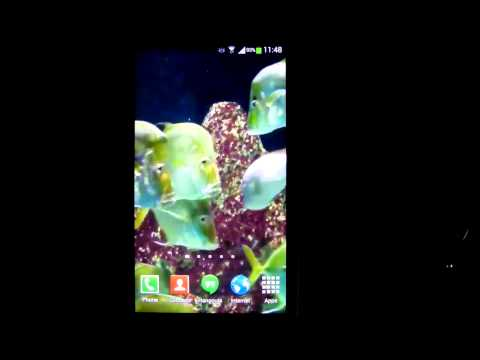 Video of Aquarium Live Wallpaper 4