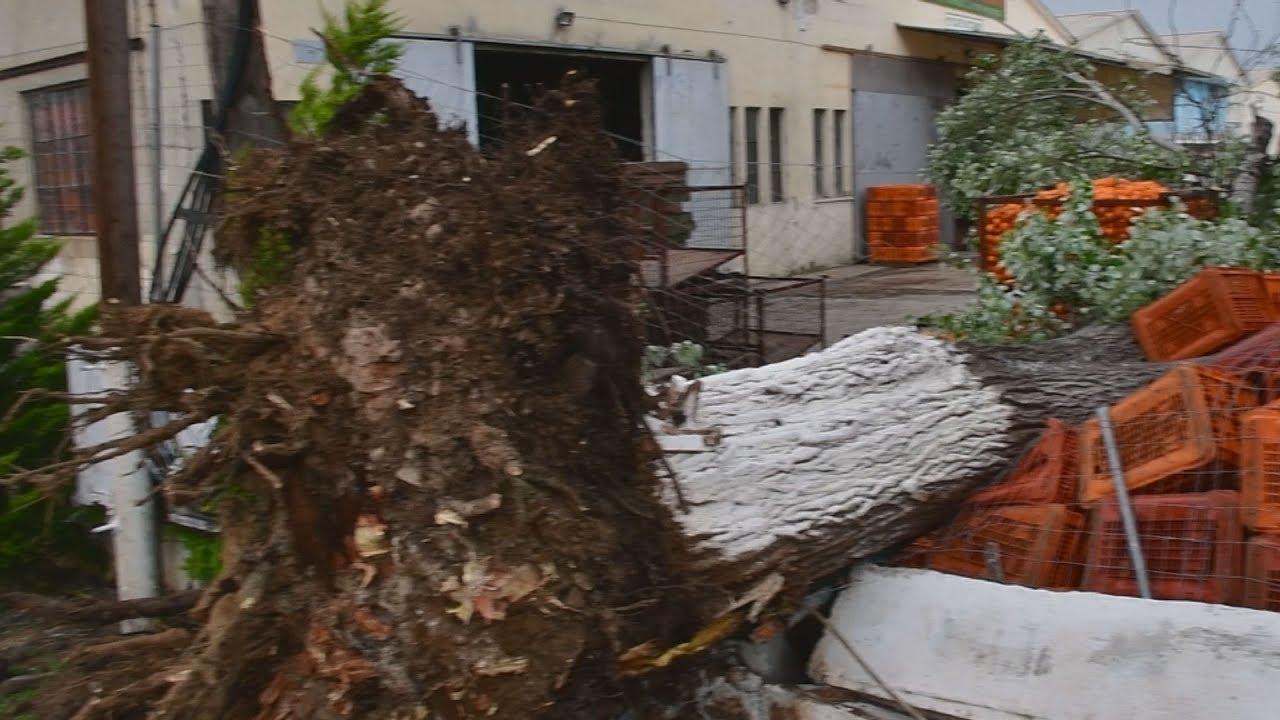Οι θυελλώδεις άνεμοι προκάλεσαν ζημιές στο Ναύπλιο