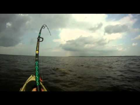 Giant Red Drum from Kayak – Pamlico Sound, NC