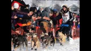 2012 Iditarod Trail Sled Dog Race in Alaska