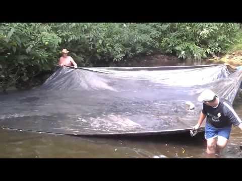 Cách bắt cá không tưởng - lạ nhất trên thế giới