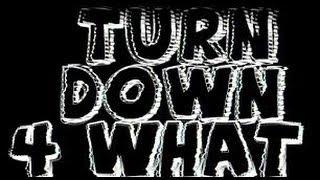 DJ Snake & Lil Jon - Turn Down for What| LYRICS