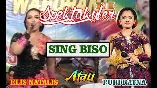 SING BISO - ELIS NATALIS