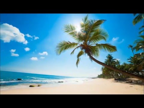 Veure vídeoLa Tele de ASSIDO - Inglés: El Tiempo