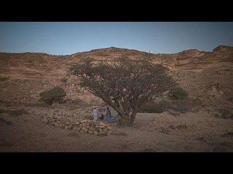 Ανακαλύψτε την μαγευτική φύση του Ομάν – life