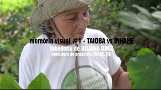 TAIOBA vs INHAME (multiplica!) memória visual da terra #1