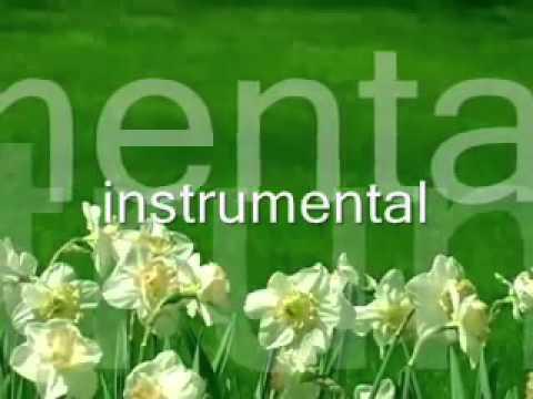 Yaj Yuam Tsab   Ntshai Ntshai Tau   instrumental (видео)
