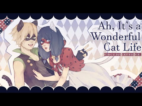 Ah, It's a Wonderful Cat Life ❘ ❮Miraculous Ladybug❯ PV