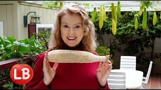 Video How to Grow LOOFA (Luffa) for Sponges | Late Bloomer | Episode 15 MP3, 3GP, MP4, WEBM, AVI, FLV Agustus 2019