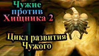 R_88rpytov0