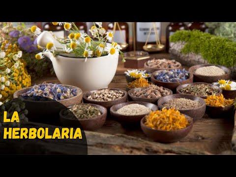 herbolaria - http://www.ComoPrevenirEnfermedades.com - La fitoterapia o también conocida como herbolaria es la ciencia del uso extractivo de las plantas medicinales o sus...