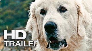 Nonton Belle   Sebastian Offizieller Teaser Trailer Deutsch German   2013 Film  Hd  Film Subtitle Indonesia Streaming Movie Download
