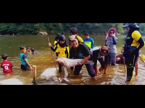 Rimbang Baling Wildlife Reserve