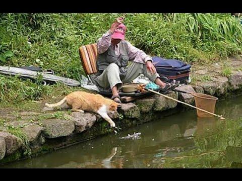 приколы на рыбалке новое видео