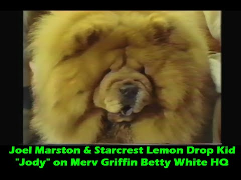 Joel Marston & Starcrest Lemon Drop Kid Jody on Merv Griffin Betty White HQ