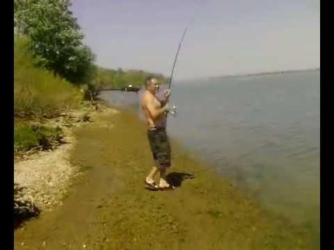 Ribolov na Dunavu-som 40kg