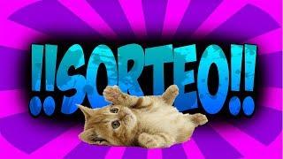 Sorteamos 5 JUGUETES EL 10 DE JULIO como el del vídeo para tu gatito, para entrar en el sorteo deberás estar suscrito a GatosRisicas en Youtube y seguirnos en Instagram!  Comenta YO LO QUIERO, EL 10 DE JULIO PUBLICAREMOS LOS GANADORES EN YOUTUBE E INSTAGRAM! MUCHA SUERTELos Videos más Chistosos de Gatos, gatitos, animales, perros, cachorritos, muy divertidos todos los días, los más tiernos, te vas a reir.Siguenos en  https://www.facebook.com/GatosRisicas0 y https://www.twitter.com/GatosRisicasSuscribete Todos los días los mejores videos Gatos y demás animales tiernos y divertidos!! https://www.instagram.com/gatosrisicas/
