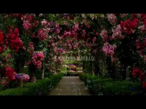 Video GIOVANNI MARRADI - Garden Of Dreams (amazing piano music) download in MP3, 3GP, MP4, WEBM, AVI, FLV January 2017