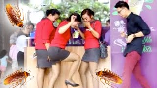 Video NGERJAIN CEWEK MUNCUL KECOA!! MAGIC PRANK!! MP3, 3GP, MP4, WEBM, AVI, FLV Mei 2017