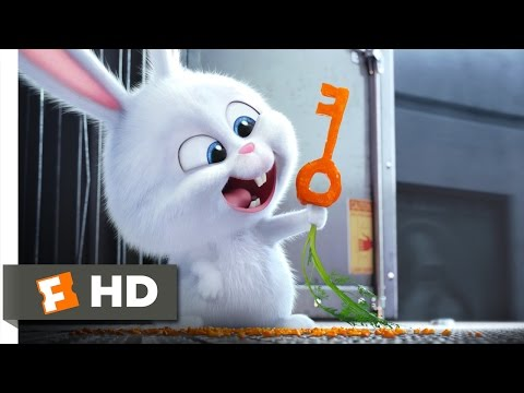 The Secret Life of Pets - Busting You Out! Scene (3/10) | Movieclips